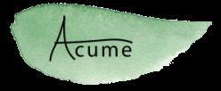 Acume Oy